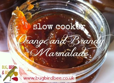 Slow Cooker Orange And Brandy Marmalade