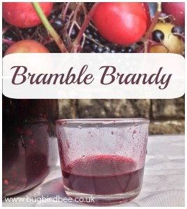 Bramble Brandy is made from a mix of damsons, plums, elderberries and blackberries and a good quality brandy.Left for 3 months this vitamin C rich tipple with warm you on a cold Winter's evening or can be drunk as a hot toddy when you have a cold or flu.