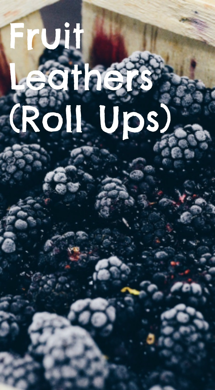 Fruit Leathers (Roll Ups)