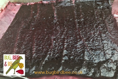 Fruit leather (roll ups) are made from fruit puree and honey .Spread over a baking sheet and dried in the oven for at least 12 hours.There are they cut and rolled up.