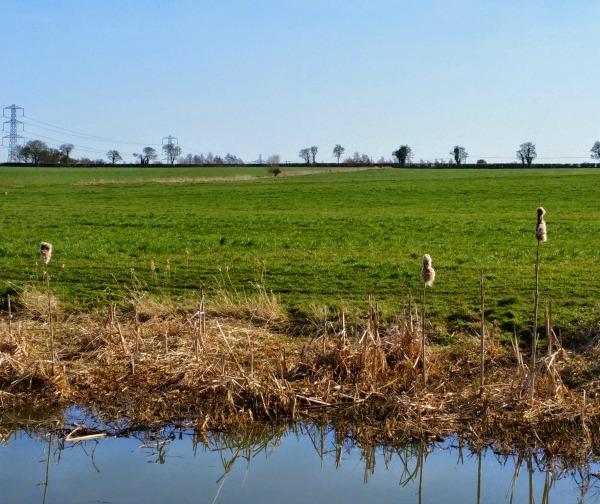 Hilperton, Wiltshire Canal