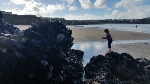 Tolcarne Beach, Newquay, Cornwall, U.K.