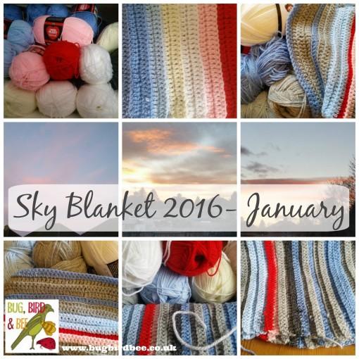 Sky Blanket 2016- January
