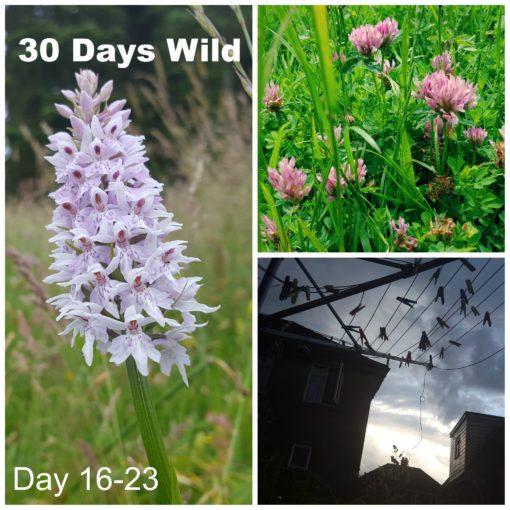 30 Days Wild 16 -23